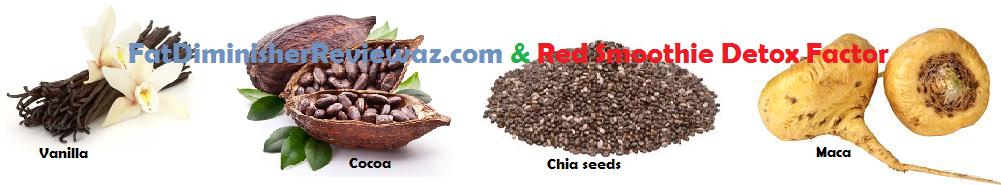 Red smoothie detox factor review by elizabeth swann miller diet